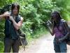 Daryl e Michonne